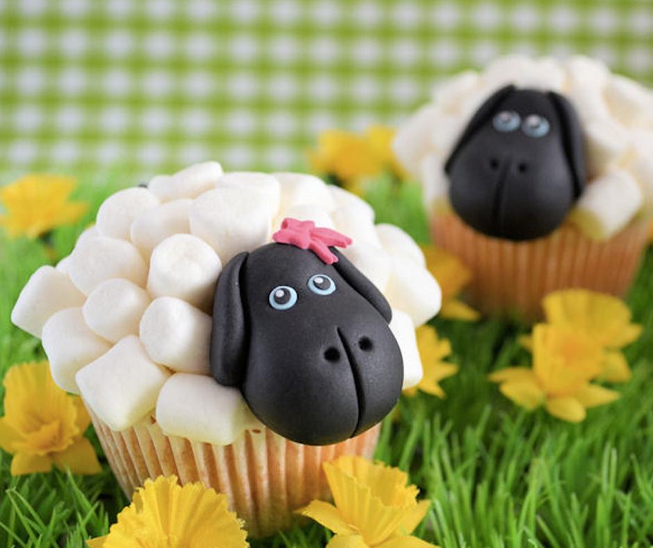 sheep-winkel